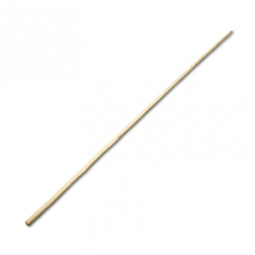 Bastone lungo per KungFu